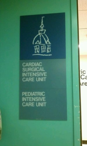 picu entry